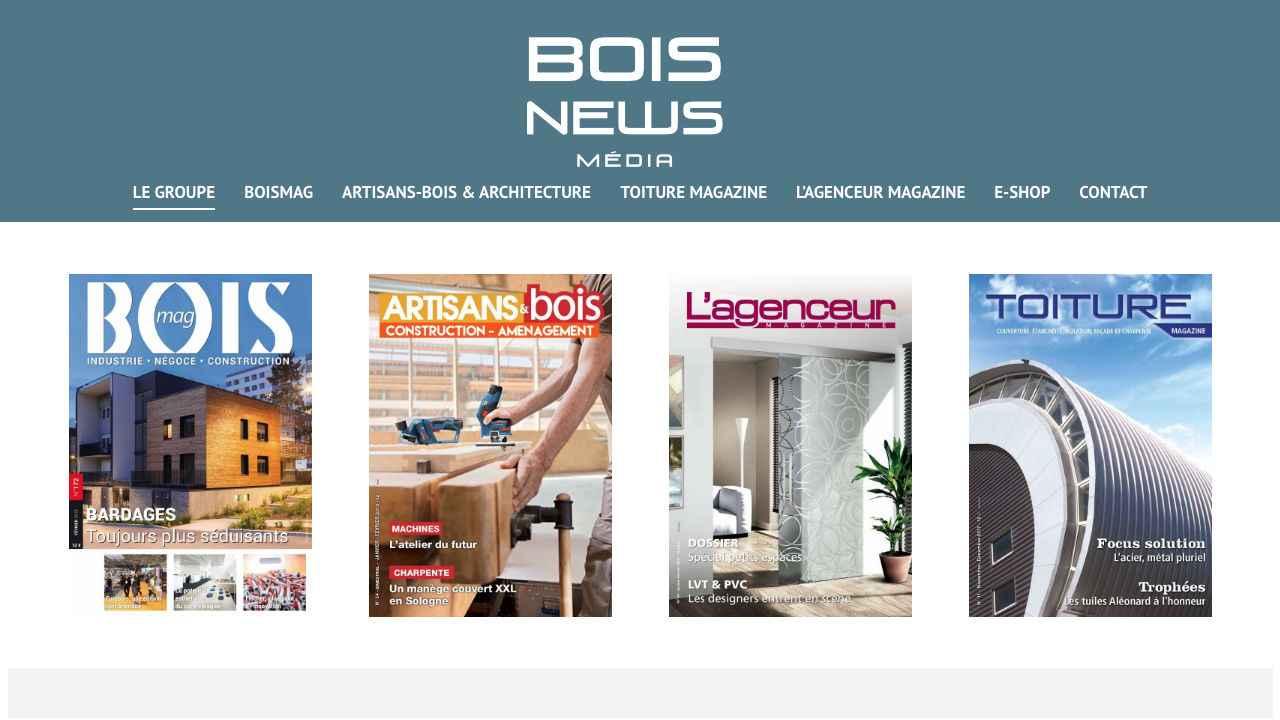 Bois News Media