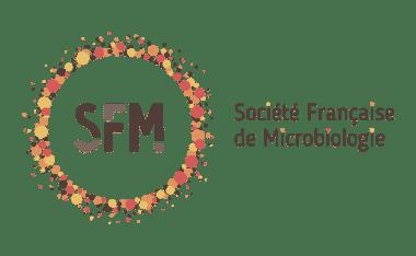 SFM Logotypebaseline Couleurs - Logo, logotype, insigne : définitions et différences