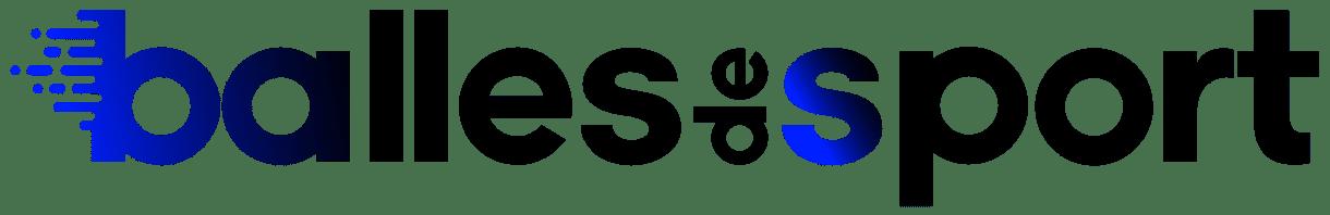 logo b2s 2 1024x166 - Logo, logotype, insigne : définitions et différences